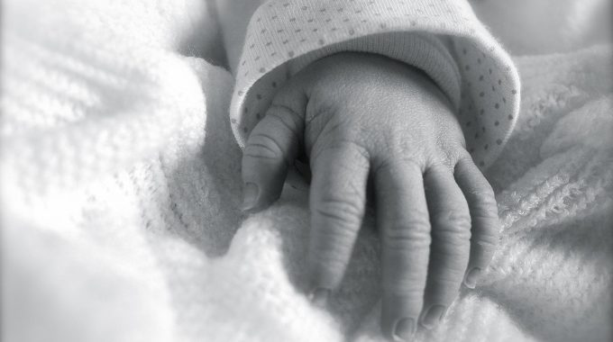 Certificado De Nacimiento De Un Antepasado